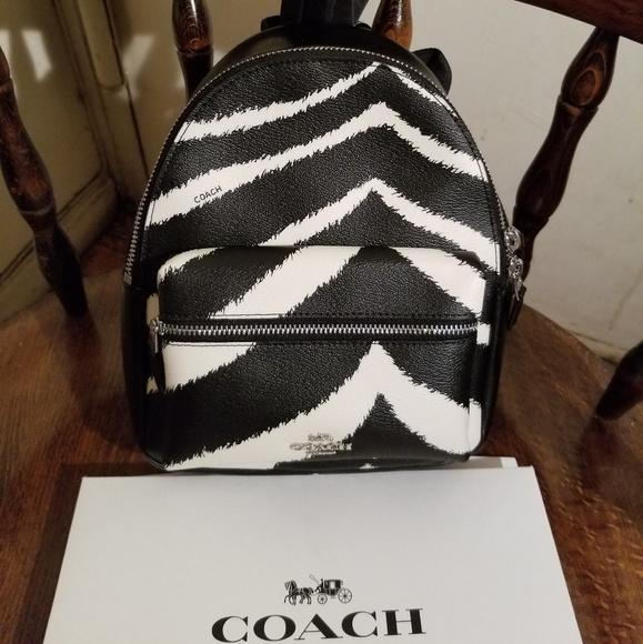 28caba4c23 Coach NWT  295 Zebra Mini Charlie Backpack